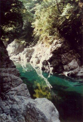 大杉渓谷・緑の瀞